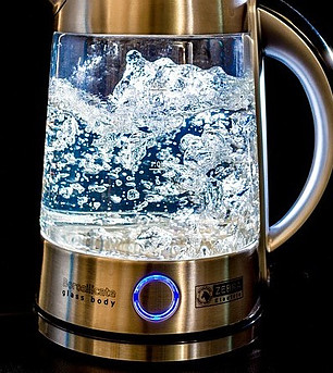 Boiling electric temperature kettle