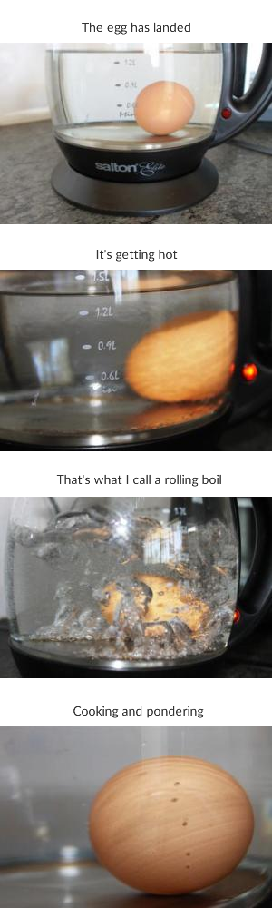 cooking egg in kettle